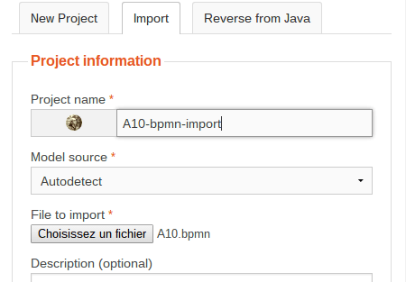 BPMN Import Project Information